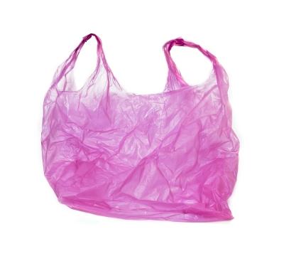 Plastic Bags Convenience Vs The Environment Laura